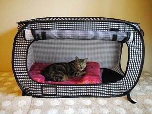 Portable Stress Free Cat Cage Necoichi Official Site