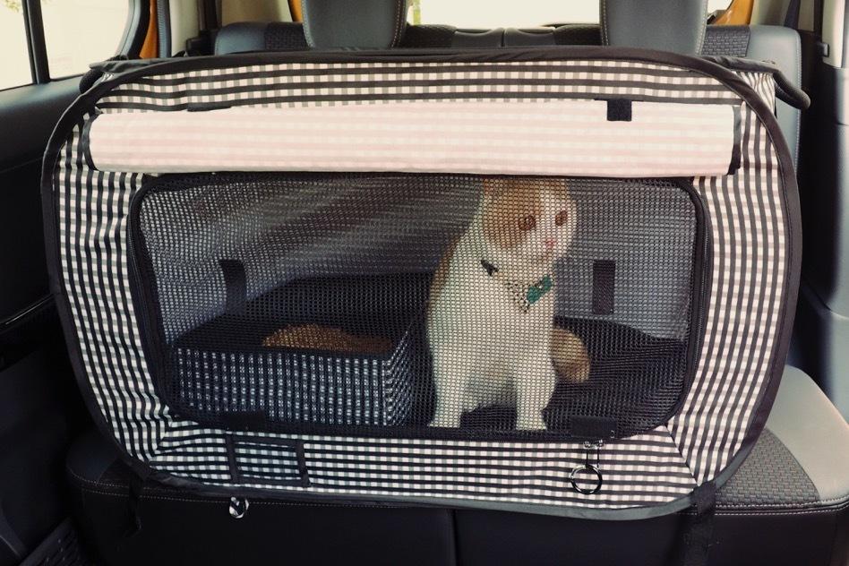 Portable Cat Litter Box Necoichi Official Site